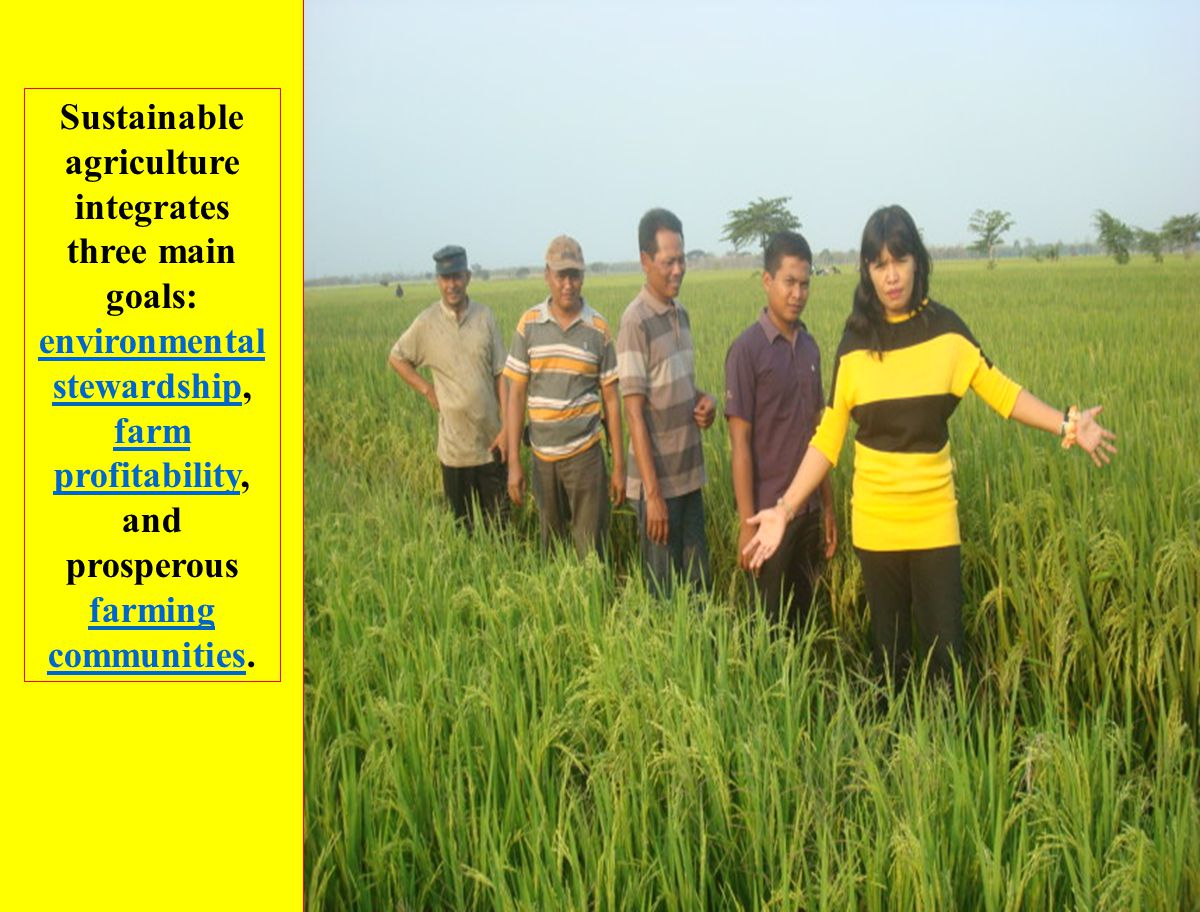 Sustainable agriculture integrates three main goals: environmental stewardship, farm profitability, and prosperous farming communities.