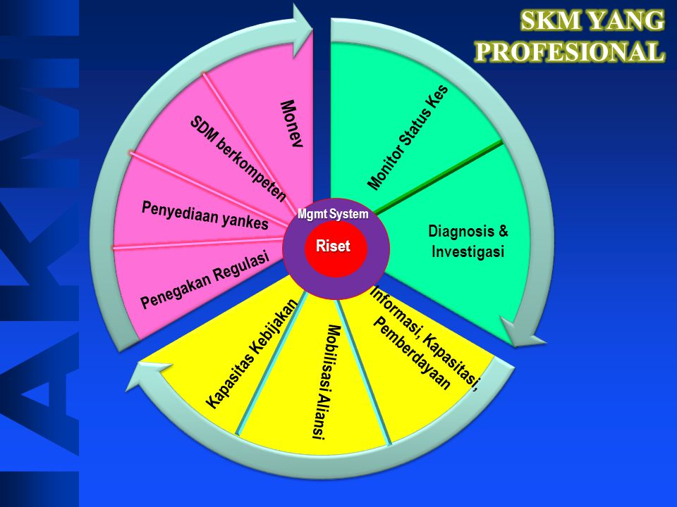 MI RESEARCHER RACLE APPRENTICECOMMUNITARIANLEADEREDUCATOR INNOVATOR MANAGER SKM adalah..