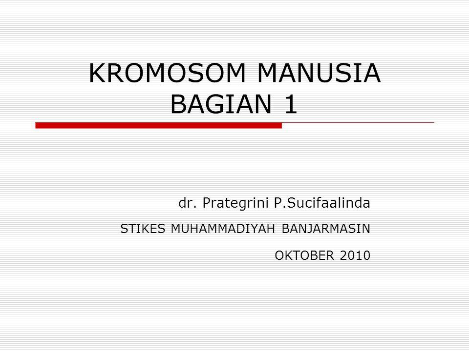 KROMOSOM MANUSIA BAGIAN 1 dr.