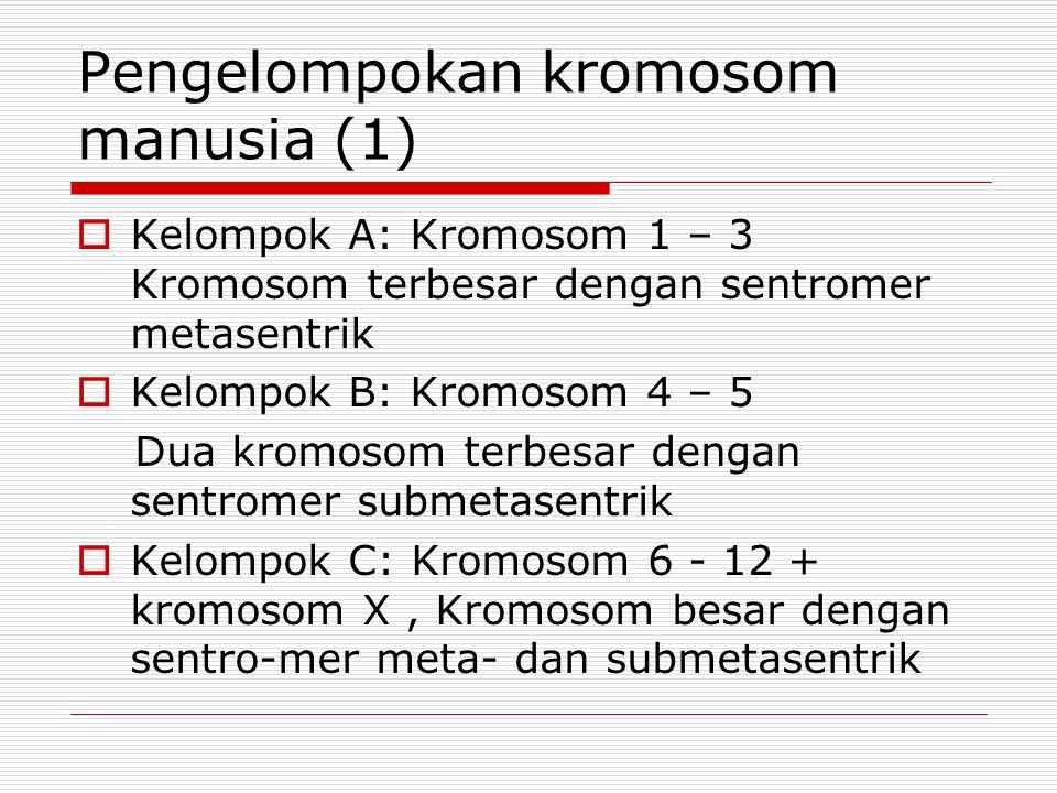 Pengelompokan kromosom manusia (1)  Kelompok A: Kromosom 1 – 3 Kromosom terbesar dengan sentromer metasentrik  Kelompok B: Kromosom 4 – 5 Dua kromosom terbesar dengan sentromer submetasentrik  Kelompok C: Kromosom 6 - 12 + kromosom X, Kromosom besar dengan sentro-mer meta- dan submetasentrik