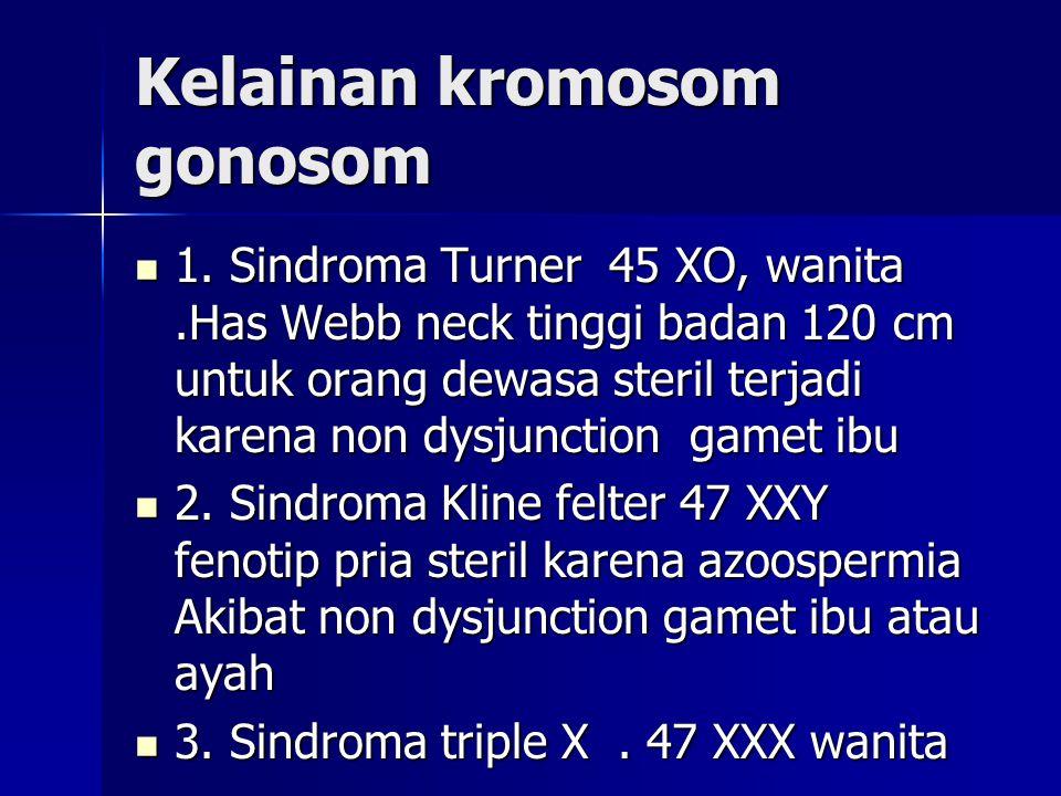 Kelainan kromosom gonosom 1. Sindroma Turner 45 XO, wanita.Has Webb neck tinggi badan 120 cm untuk orang dewasa steril terjadi karena non dysjunction