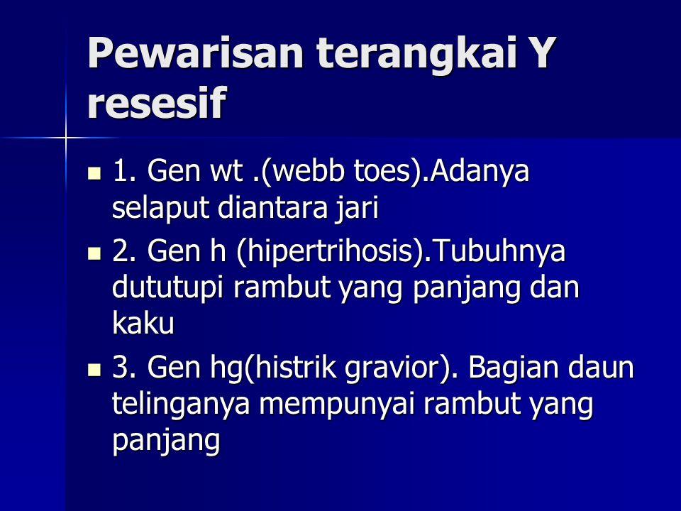 Pewarisan terangkai Y resesif 1. Gen wt.(webb toes).Adanya selaput diantara jari 1. Gen wt.(webb toes).Adanya selaput diantara jari 2. Gen h (hipertri