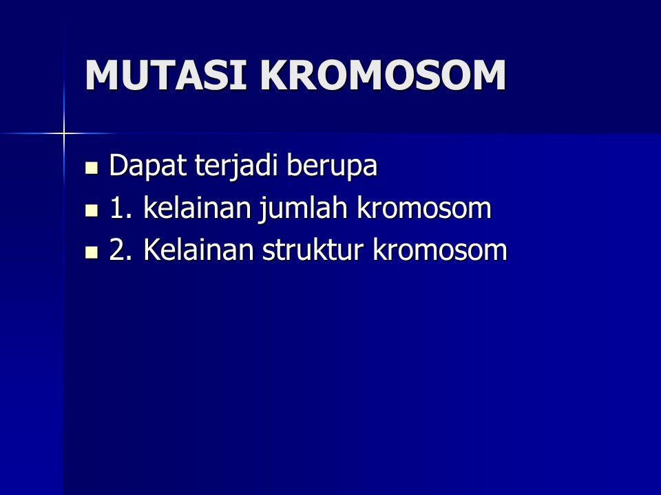 MUTASI KROMOSOM Dapat terjadi berupa Dapat terjadi berupa 1. kelainan jumlah kromosom 1. kelainan jumlah kromosom 2. Kelainan struktur kromosom 2. Kel