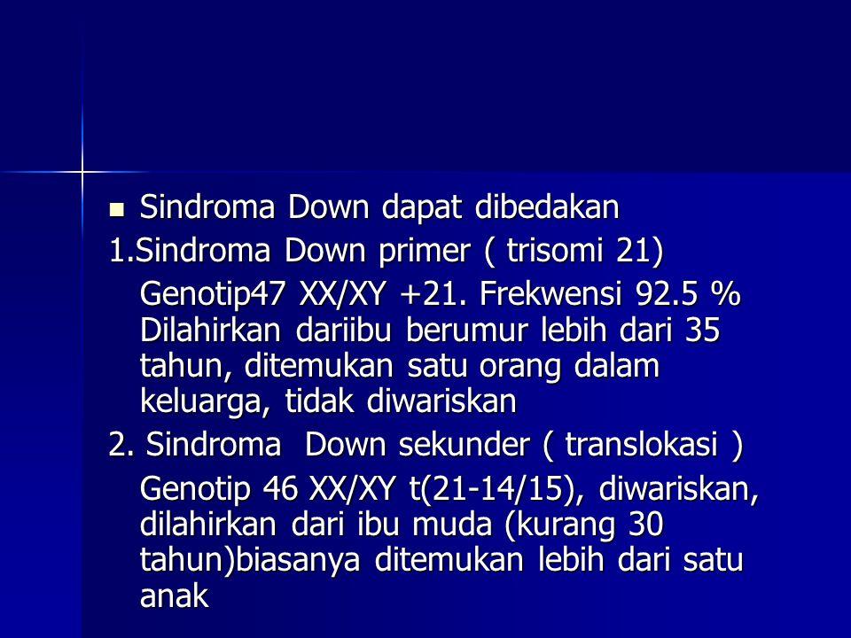 Sindroma Down dapat dibedakan Sindroma Down dapat dibedakan 1.Sindroma Down primer ( trisomi 21) Genotip47 XX/XY +21. Frekwensi 92.5 % Dilahirkan dari