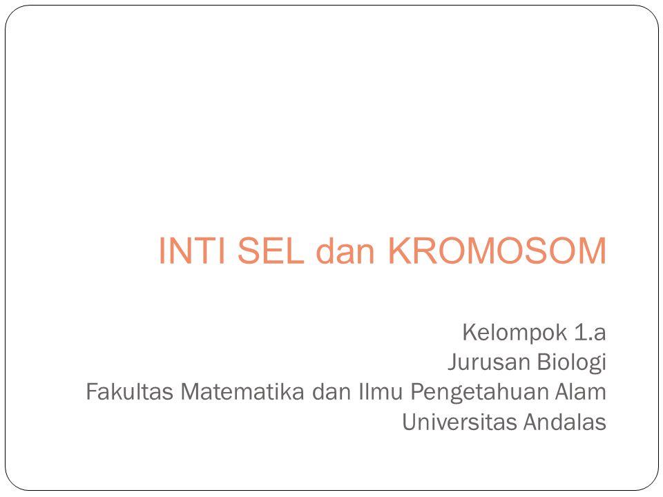 INTI SEL dan KROMOSOM Kelompok 1.a Jurusan Biologi Fakultas Matematika dan Ilmu Pengetahuan Alam Universitas Andalas