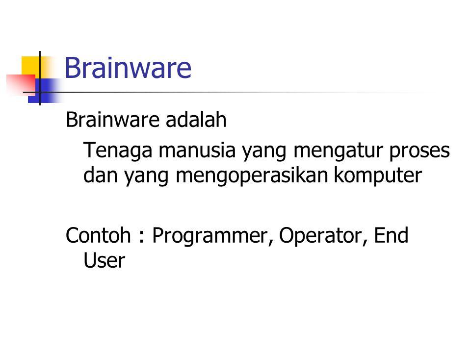 Brainware Brainware adalah Tenaga manusia yang mengatur proses dan yang mengoperasikan komputer Contoh : Programmer, Operator, End User