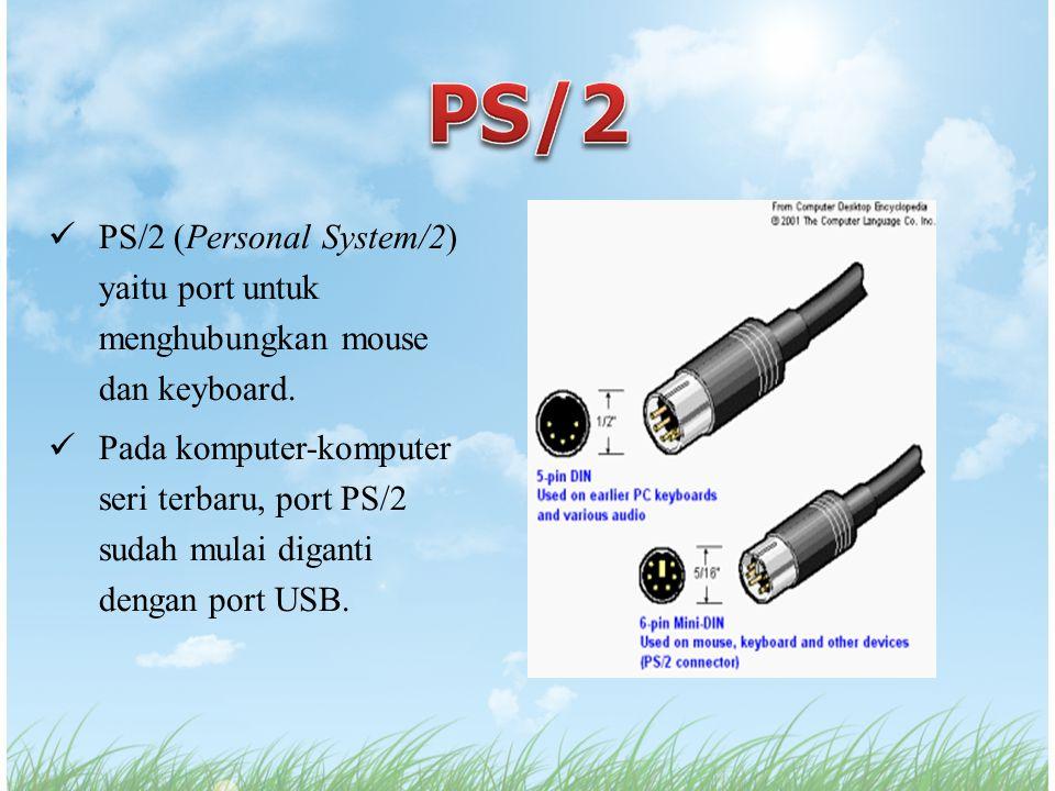 PS/2 (Personal System/2) yaitu port untuk menghubungkan mouse dan keyboard. Pada komputer-komputer seri terbaru, port PS/2 sudah mulai diganti dengan