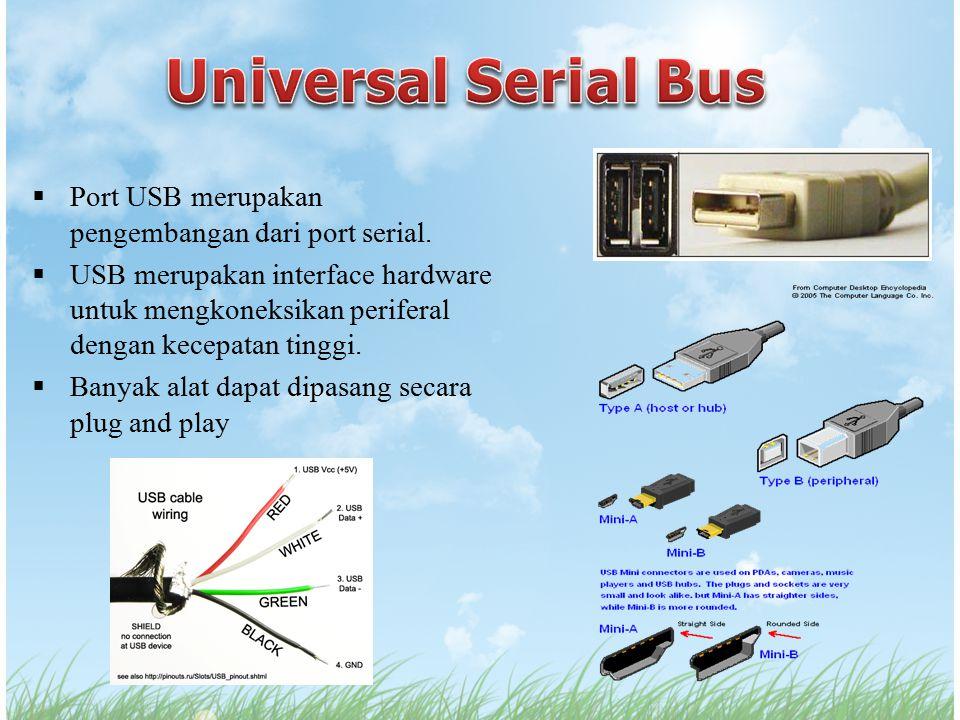  Port USB merupakan pengembangan dari port serial.  USB merupakan interface hardware untuk mengkoneksikan periferal dengan kecepatan tinggi.  Banya