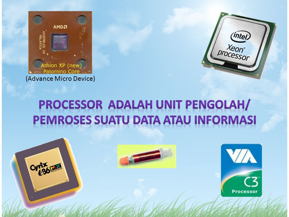 (Advance Micro Device)