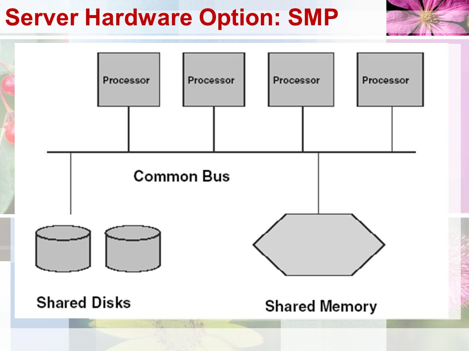 Server Hardware Option: SMP