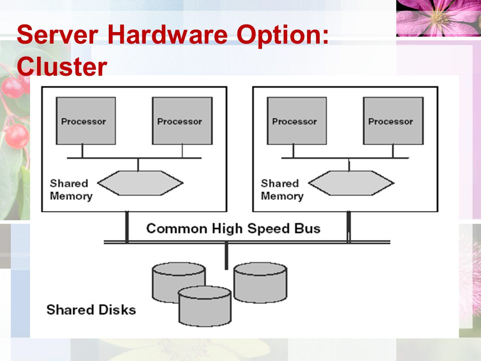 Server Hardware Option: Cluster