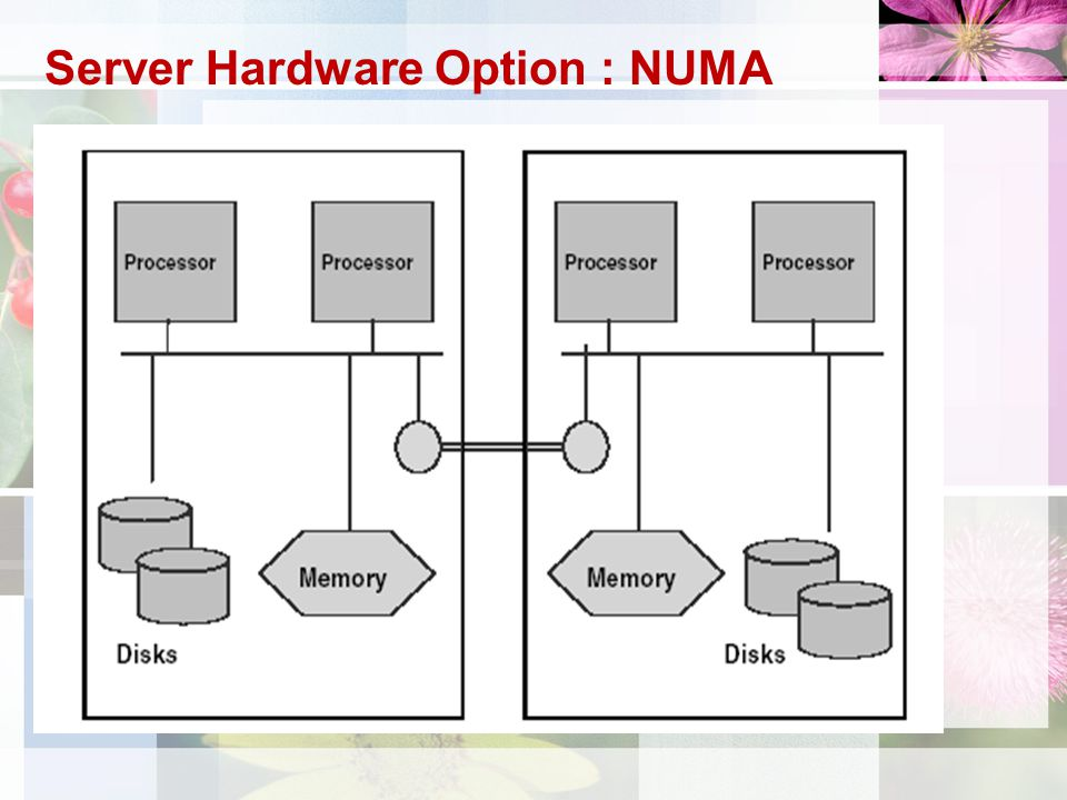 Server Hardware Option : NUMA
