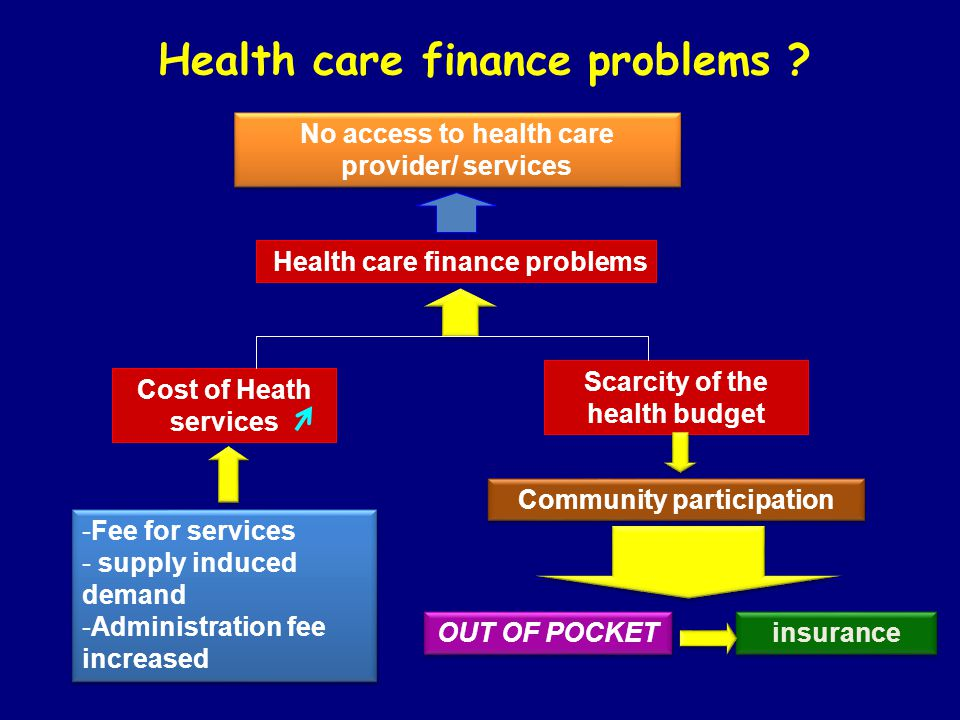 Health care finance problems ? No access to health care provider/ services Health care finance problems Cost of Heath services Scarcity of the health