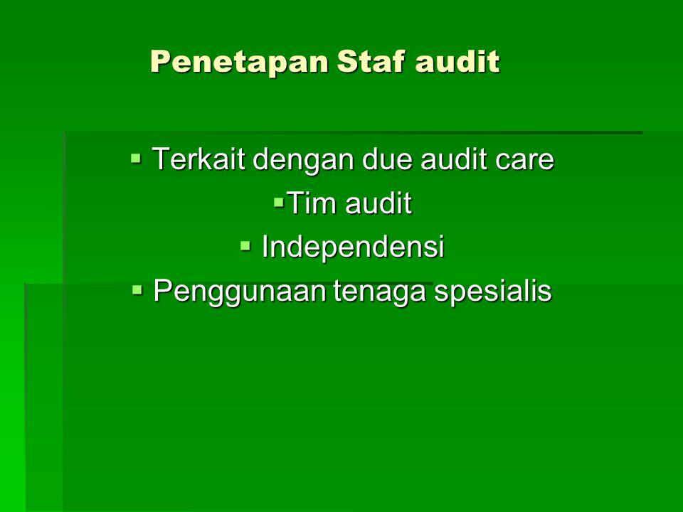 Penetapan Staf audit  Terkait dengan due audit care  Tim audit  Independensi  Penggunaan tenaga spesialis
