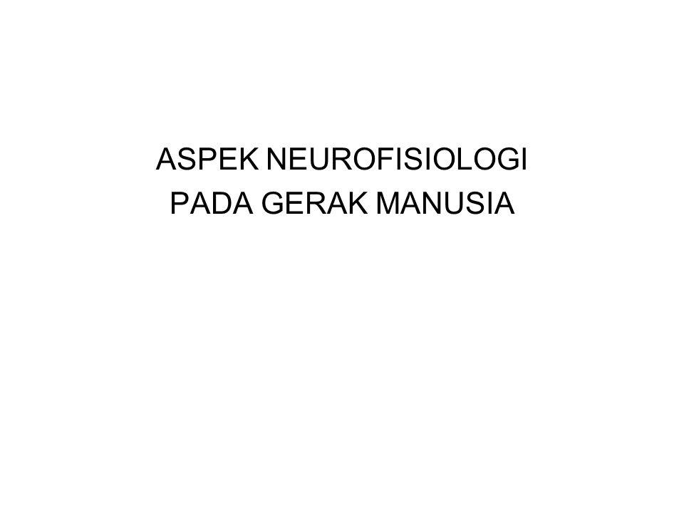 ASPEK NEUROFISIOLOGI PADA GERAK MANUSIA