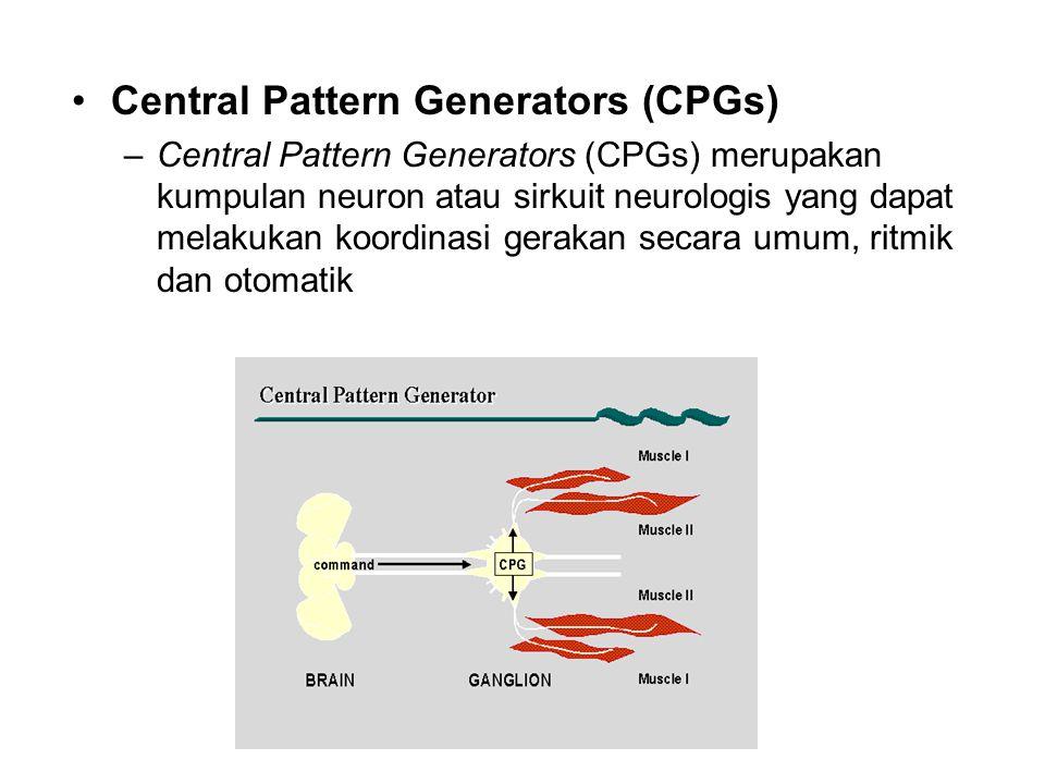 Central Pattern Generators (CPGs) –Central Pattern Generators (CPGs) merupakan kumpulan neuron atau sirkuit neurologis yang dapat melakukan koordinasi