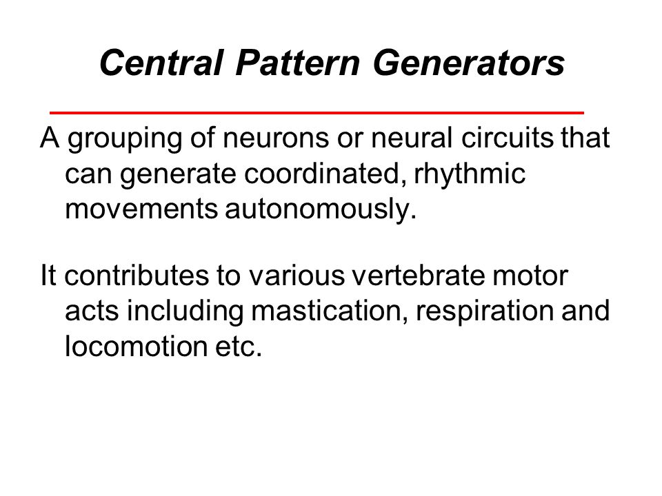 Central Pattern Generators A grouping of neurons or neural circuits that can generate coordinated, rhythmic movements autonomously. It contributes to