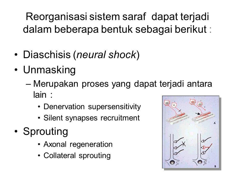 Reorganisasi sistem saraf dapat terjadi dalam beberapa bentuk sebagai berikut : Diaschisis (neural shock) Unmasking –Merupakan proses yang dapat terja