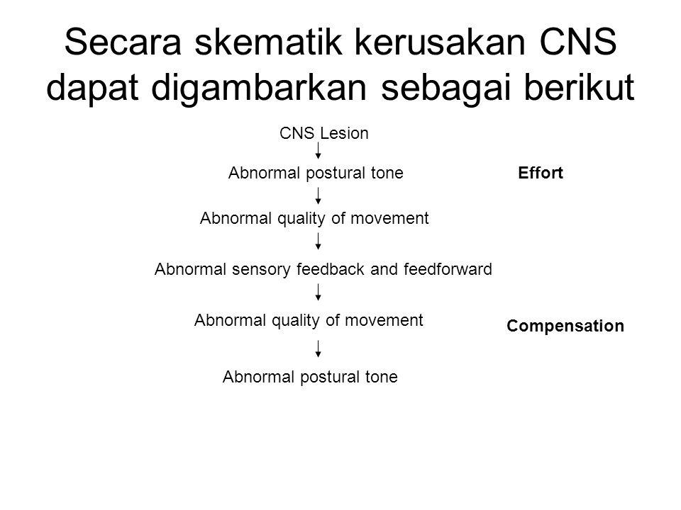 Secara skematik kerusakan CNS dapat digambarkan sebagai berikut CNS Lesion Abnormal postural tone Abnormal quality of movement Abnormal sensory feedba