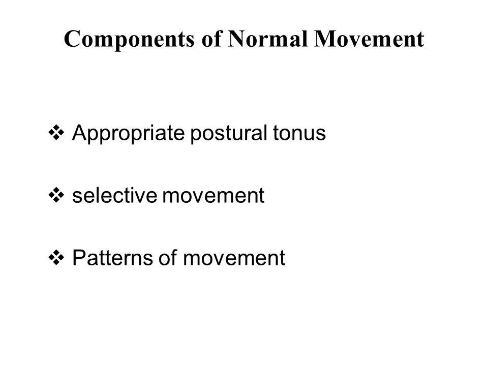 Plastisitas Sistem Saraf Plastisitas otak (neuroplasticity) adalah kemampuan otak melakukan reorganisasi dalam bentuk adanya interkoneksi baru pada saraf.