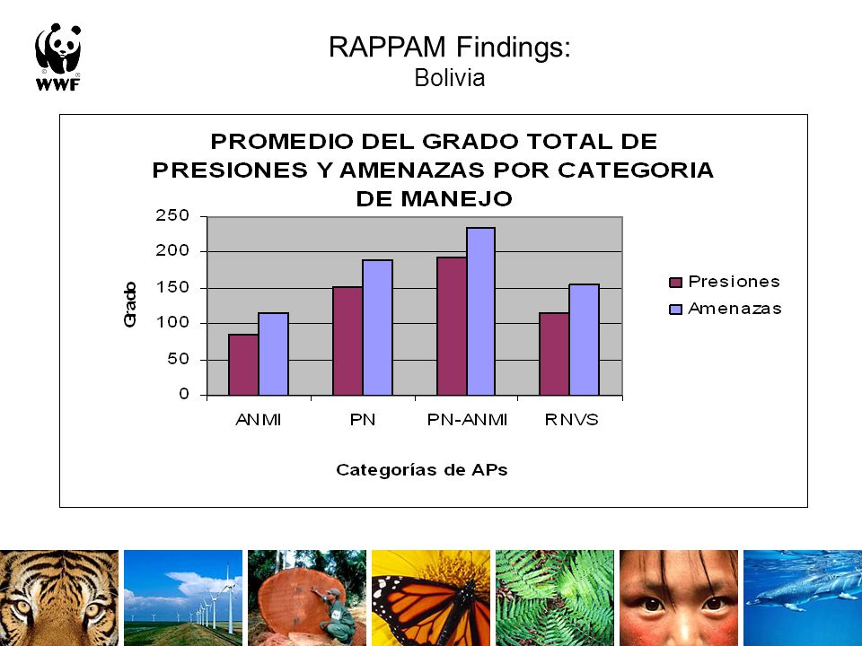 RAPPAM Findings: Bolivia