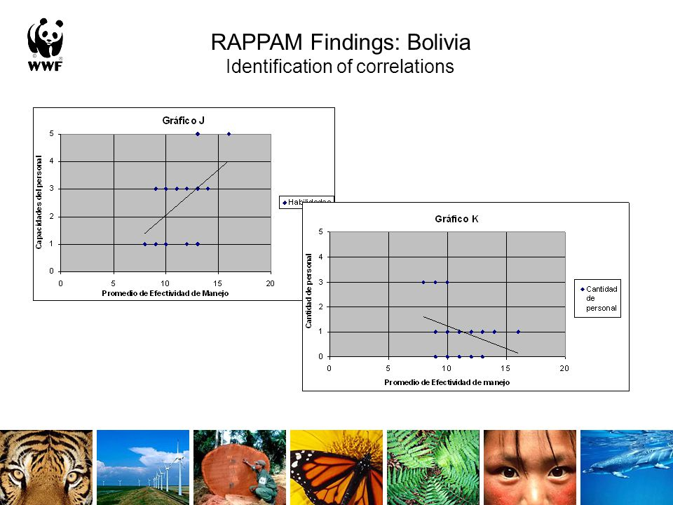 RAPPAM Findings: Bolivia Identification of correlations