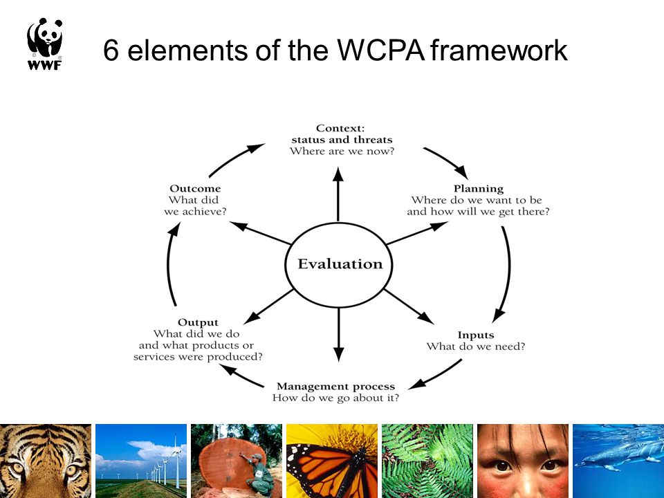 6 elements of the WCPA framework