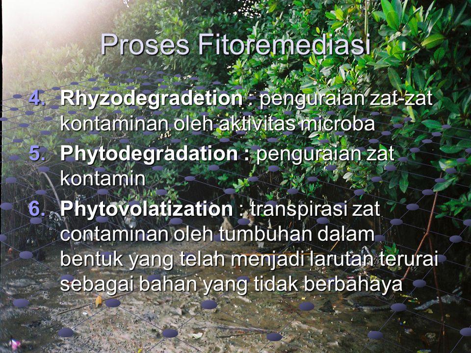 Proses Fitoremediasi 4.Rhyzodegradetion : penguraian zat-zat kontaminan oleh aktivitas microba 5.Phytodegradation : penguraian zat kontamin 6.Phytovol