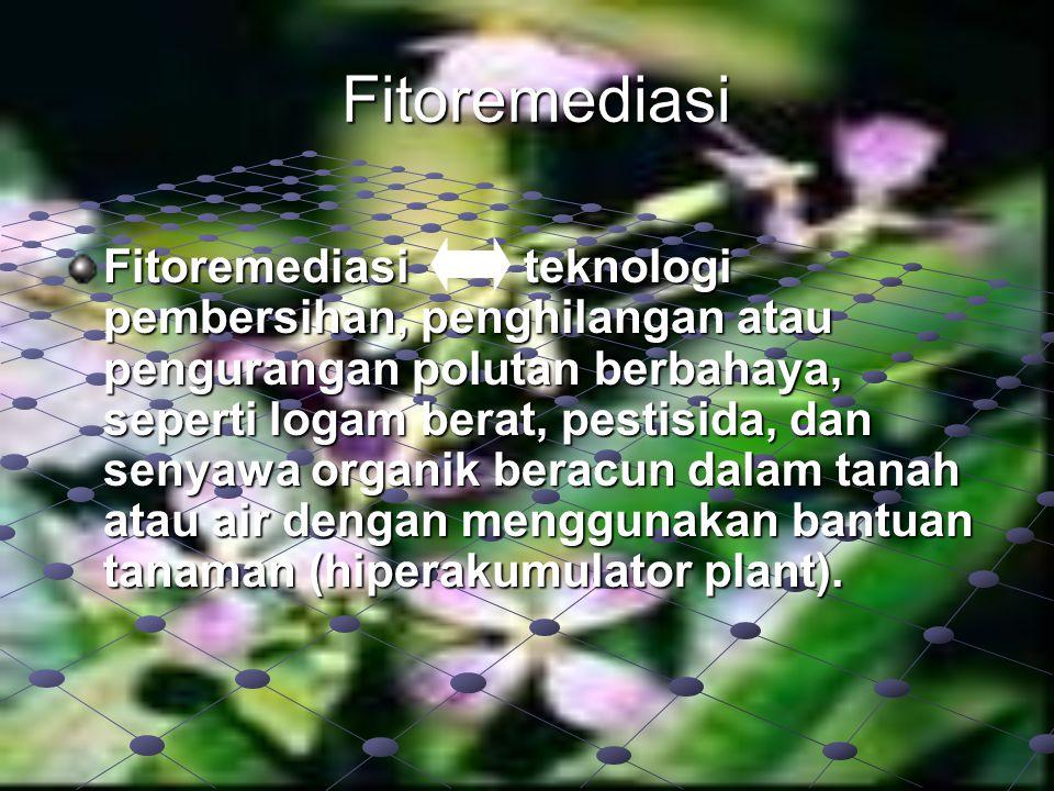 Fitoremediasi Fitoremediasi teknologi pembersihan, penghilangan atau pengurangan polutan berbahaya, seperti logam berat, pestisida, dan senyawa organi