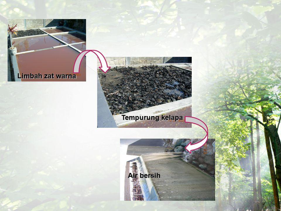 Limbah zat warna Tempurung kelapa Air bersih