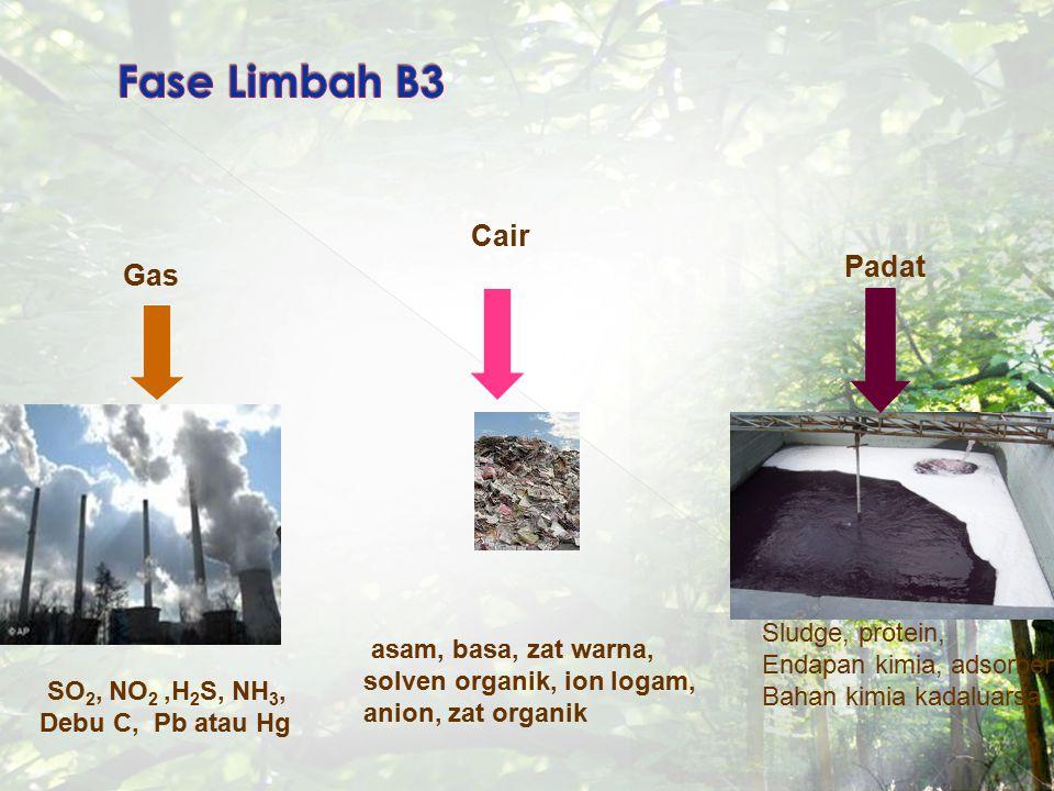 Gas Cair Padat SO 2, NO 2,H 2 S, NH 3, Debu C, Pb atau Hg asam, basa, zat warna, solven organik, ion logam, anion, zat organik Sludge, protein, Endapa