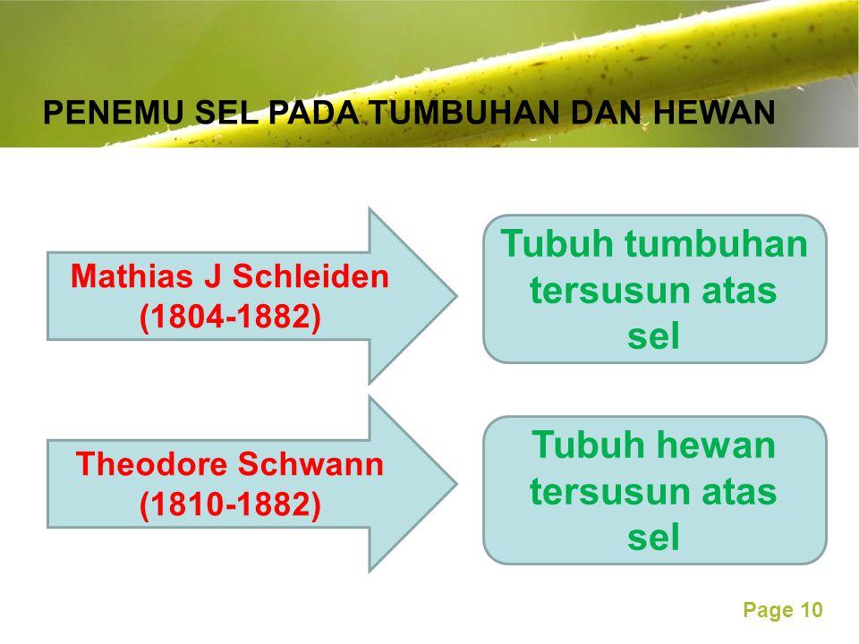 Free Powerpoint Templates Page 10 PENEMU SEL PADA TUMBUHAN DAN HEWAN Mathias J Schleiden (1804-1882) Theodore Schwann (1810-1882) Tubuh tumbuhan tersusun atas sel Tubuh hewan tersusun atas sel