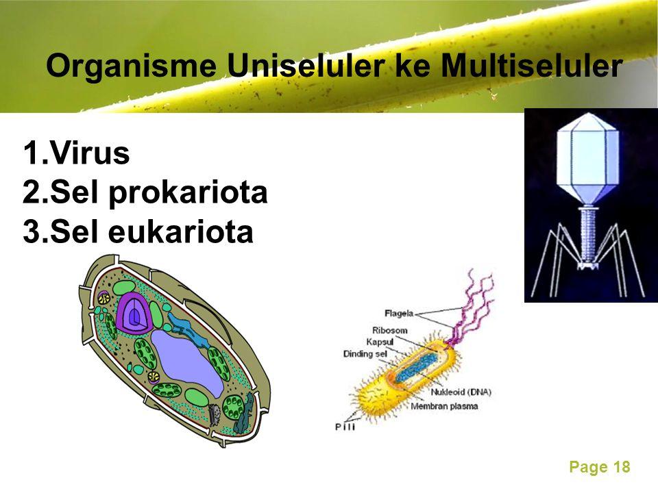 Free Powerpoint Templates Page 18 Organisme Uniseluler ke Multiseluler 1.Virus 2.Sel prokariota 3.Sel eukariota