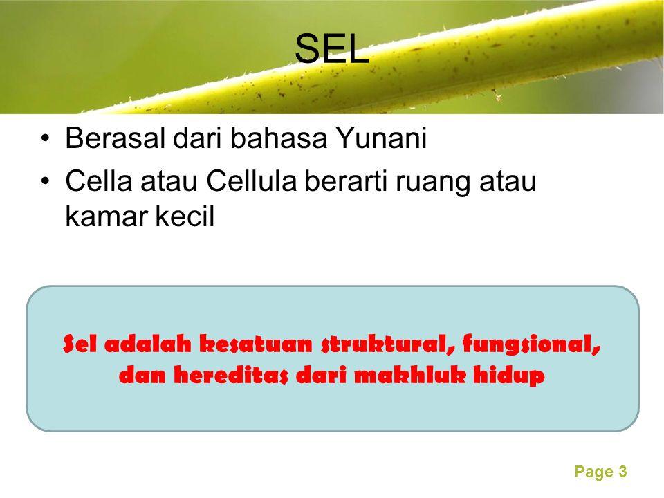 Free Powerpoint Templates Page 3 SEL Berasal dari bahasa Yunani Cella atau Cellula berarti ruang atau kamar kecil Sel adalah kesatuan struktural, fungsional, dan hereditas dari makhluk hidup