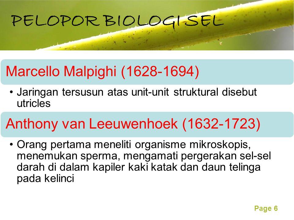 Free Powerpoint Templates Page 6 Marcello Malpighi (1628-1694) Jaringan tersusun atas unit-unit struktural disebut utricles Anthony van Leeuwenhoek (1632-1723) Orang pertama meneliti organisme mikroskopis, menemukan sperma, mengamati pergerakan sel-sel darah di dalam kapiler kaki katak dan daun telinga pada kelinci PELOPOR BIOLOGI SEL