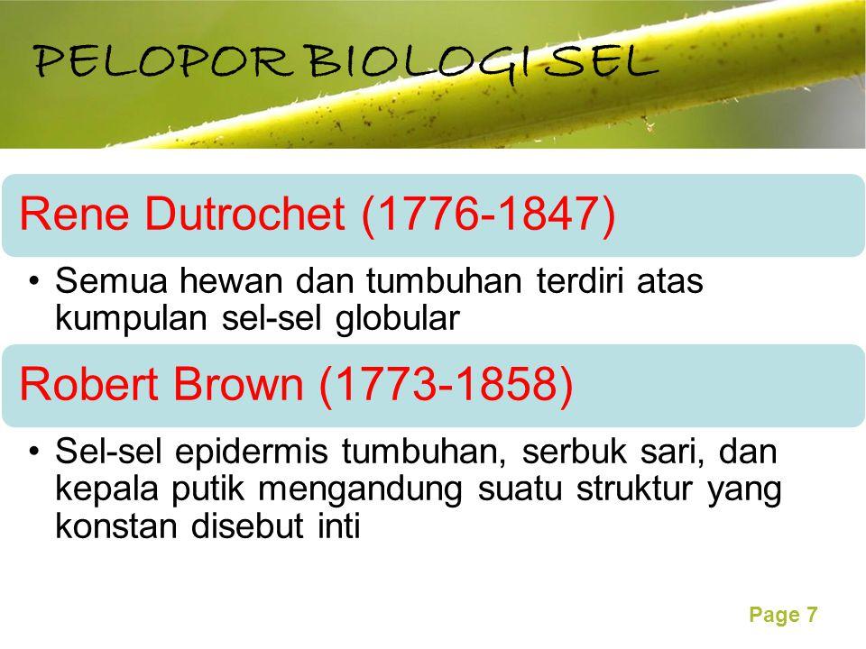 Free Powerpoint Templates Page 7 Rene Dutrochet (1776-1847) Semua hewan dan tumbuhan terdiri atas kumpulan sel-sel globular Robert Brown (1773-1858) Sel-sel epidermis tumbuhan, serbuk sari, dan kepala putik mengandung suatu struktur yang konstan disebut inti PELOPOR BIOLOGI SEL