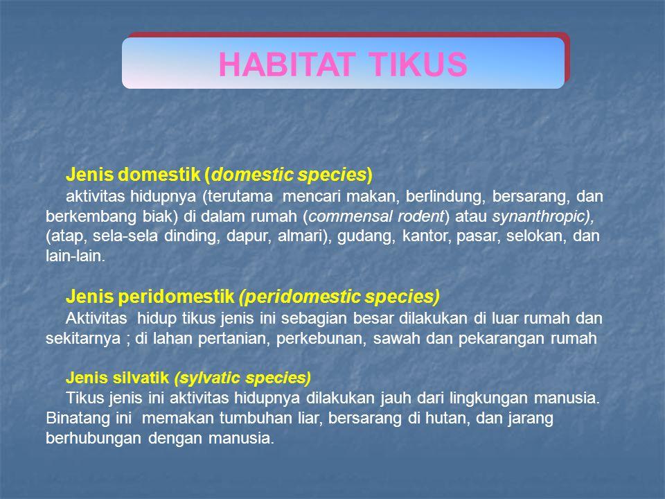 Jenis domestik (domestic species) aktivitas hidupnya (terutama mencari makan, berlindung, bersarang, dan berkembang biak) di dalam rumah (commensal ro