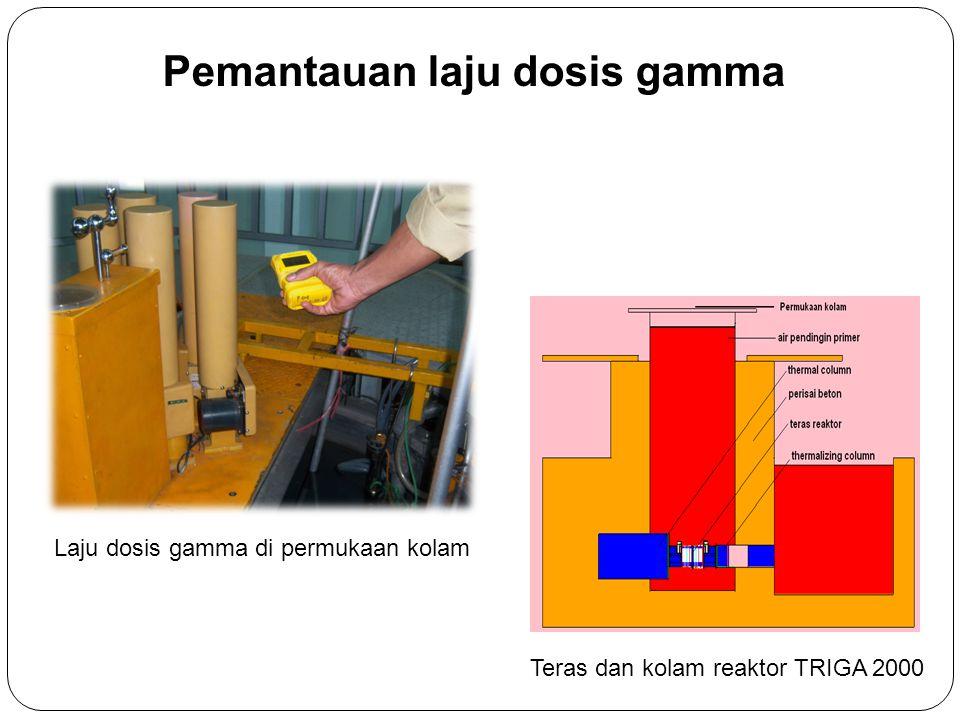 Pemantauan laju dosis gamma Laju dosis gamma di permukaan kolam Teras dan kolam reaktor TRIGA 2000
