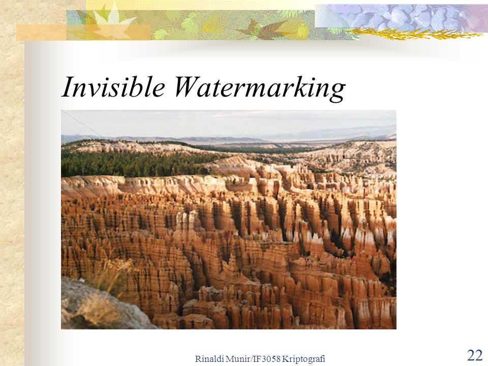 Rinaldi Munir/IF3058 Kriptografi 22 Invisible Watermarking