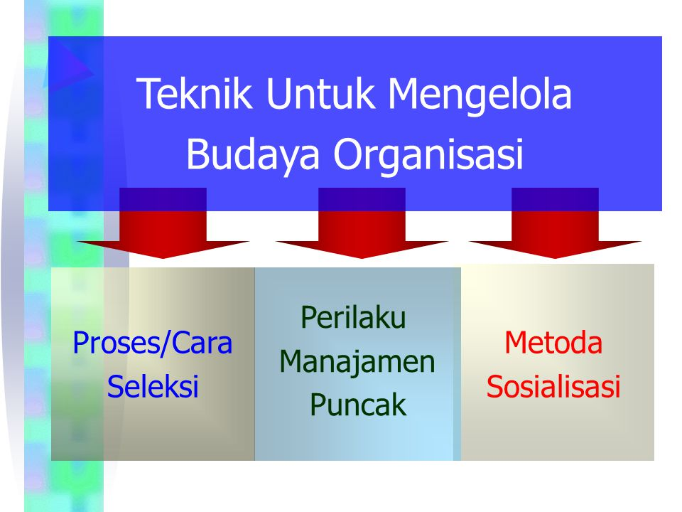 Bagaimana Budaya Organisasi Terbentuk Filosofi Pendiri Organisasi Filosofi Pendiri Organisasi Budaya Organisasi Budaya Organisasi Kriteria Seleksi Kriteria Seleksi Manajemen Puncak Manajemen Puncak Sosialisasi