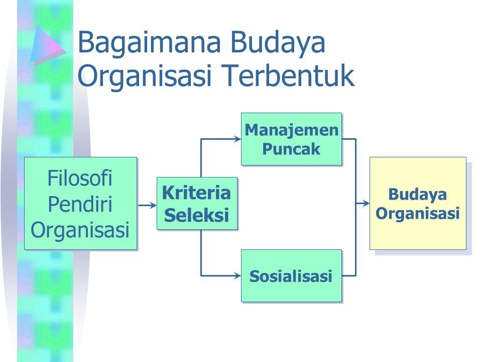 Bagaimana Budaya Organisasi Terbentuk Filosofi Pendiri Organisasi Filosofi Pendiri Organisasi Budaya Organisasi Budaya Organisasi Kriteria Seleksi Kri
