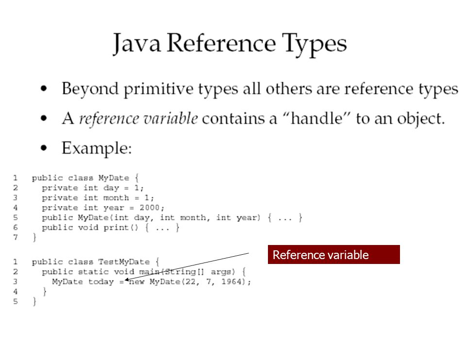 Reference variable