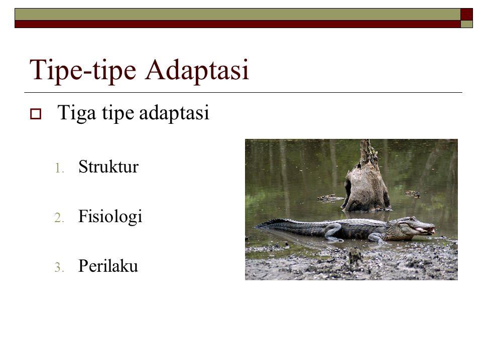 Tipe-tipe Adaptasi  Tiga tipe adaptasi 1. Struktur 2. Fisiologi 3. Perilaku