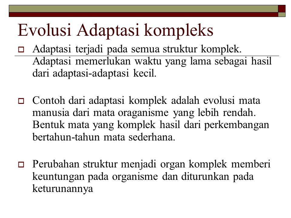 Evolusi Adaptasi kompleks  Adaptasi terjadi pada semua struktur komplek. Adaptasi memerlukan waktu yang lama sebagai hasil dari adaptasi-adaptasi kec