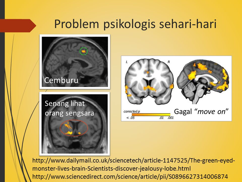 Problem psikologis sehari-hari Cemburu http://www.dailymail.co.uk/sciencetech/article-1147525/The-green-eyed- monster-lives-brain-Scientists-discover-jealousy-lobe.html http://www.sciencedirect.com/science/article/pii/S0896627314006874 Senang lihat orang sengsara Gagal move on