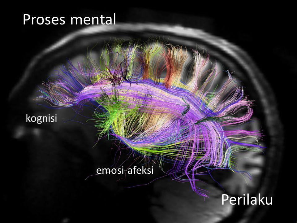 kognisi emosi-afeksi Perilaku Proses mental
