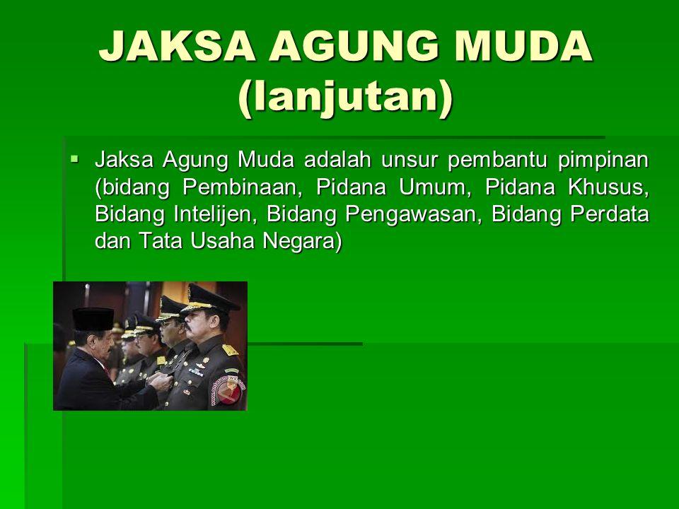 JAKSA AGUNG MUDA (lanjutan)  Jaksa Agung Muda adalah unsur pembantu pimpinan (bidang Pembinaan, Pidana Umum, Pidana Khusus, Bidang Intelijen, Bidang
