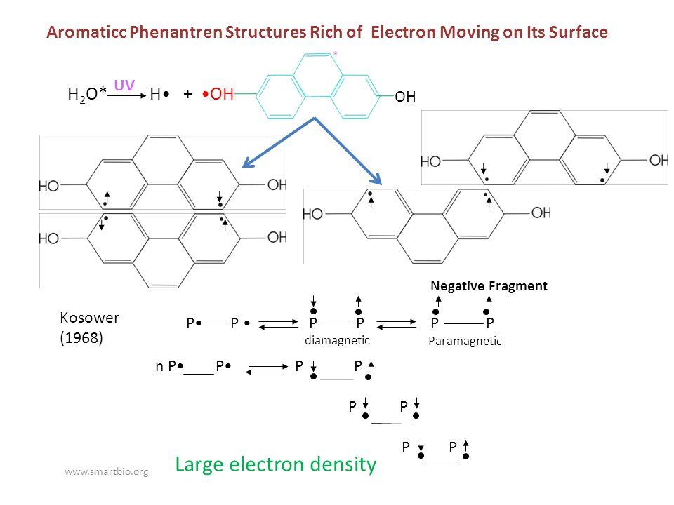 Negative Fragment H 2 O* H + OH UV * P P P P P P diamagnetic Paramagnetic n P P P P P P Large electron density Aromaticc Phenantren Structures Rich of