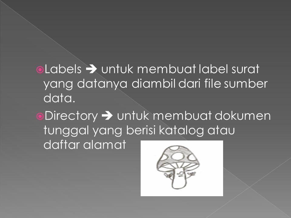  Labels  untuk membuat label surat yang datanya diambil dari file sumber data.  Directory  untuk membuat dokumen tunggal yang berisi katalog atau