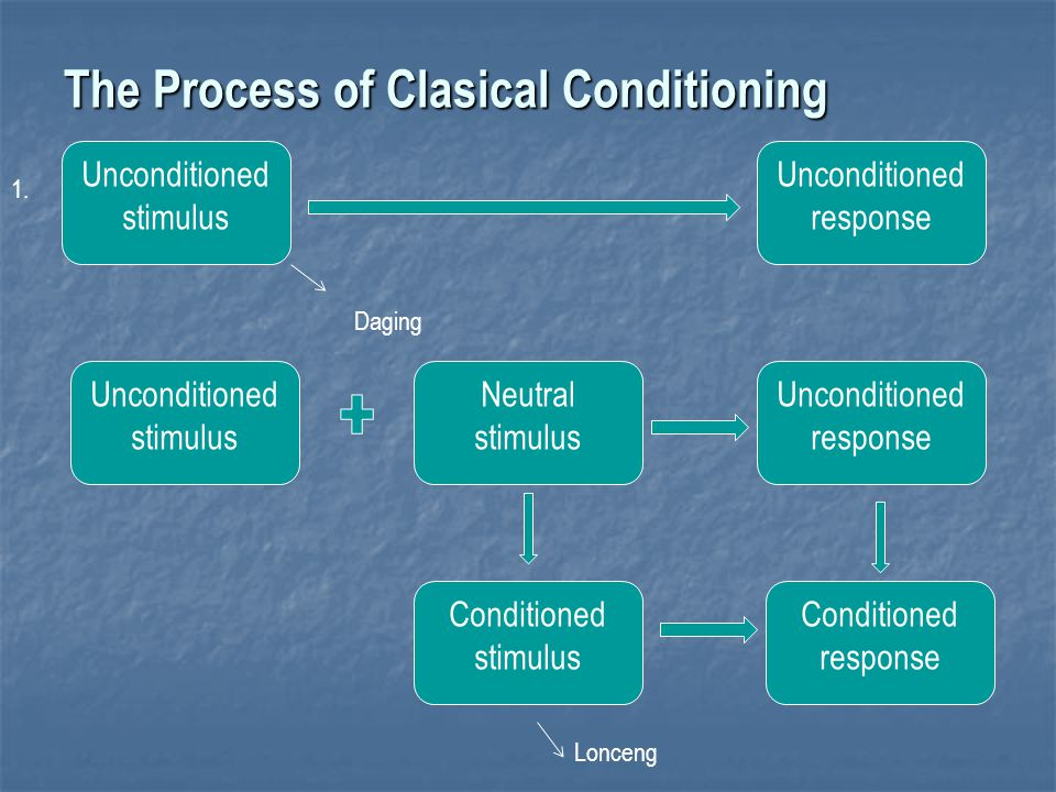 The Process of Clasical Conditioning Unconditioned stimulus 1. Unconditioned response Unconditioned stimulus Neutral stimulus Unconditioned response C